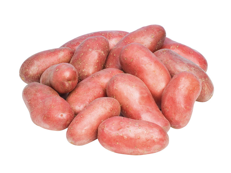 Konzumné zemiaky ružové neskoré