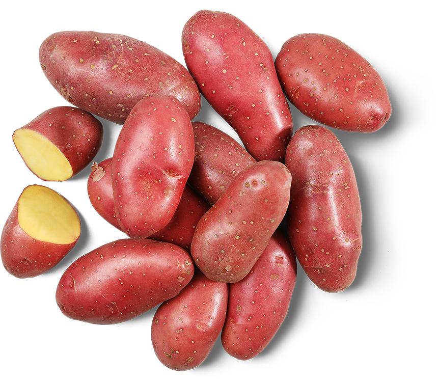 Zemiaky sadbové červené