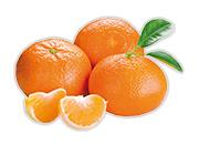 Mandarínky Klementínky bezkôstkové 1 kg