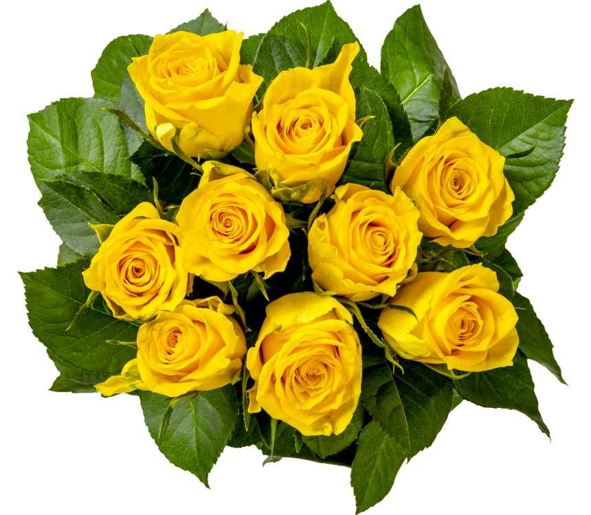 Kytica ruží oranžovo-žltá