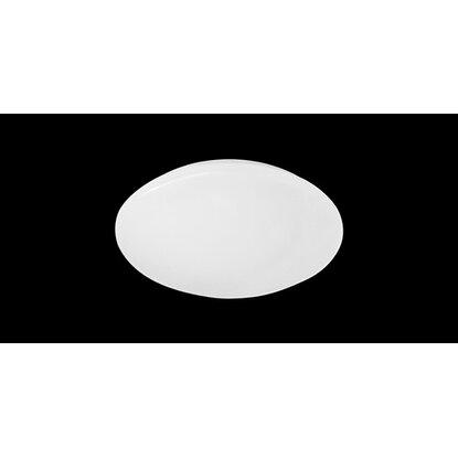 Reality Stropné LED svietidlo Putz biele 12 W plast EEK: A+