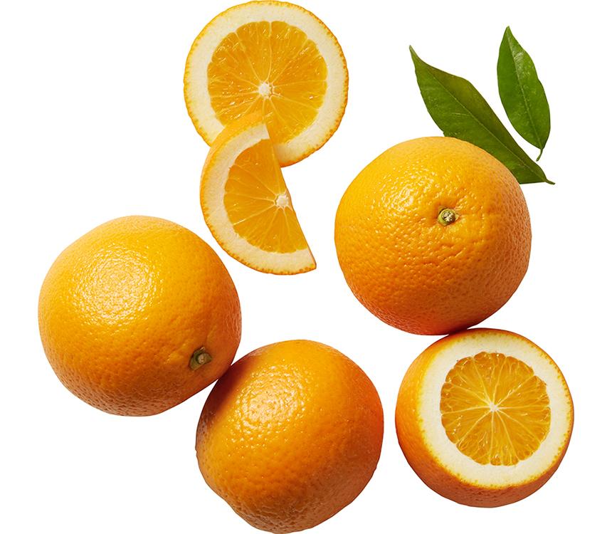 Pomeranče síť
