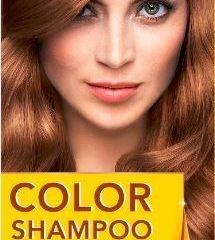Palette Color šampón 317 orieškovo-plavá 1x1 ks